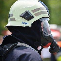 ホースマスクの画像