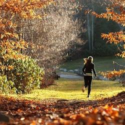 ジョギングする女性の画像