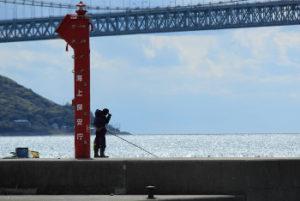 防波堤にいる釣り人の画像